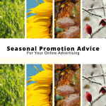 Seasonal Promotion